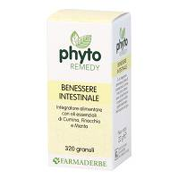 PHYTO REMEDY BENESSERE INTEST